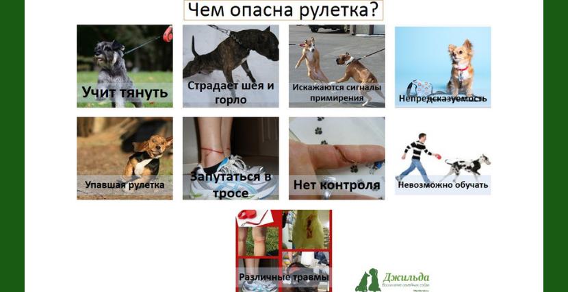 Поводок рулетка для собаки москва